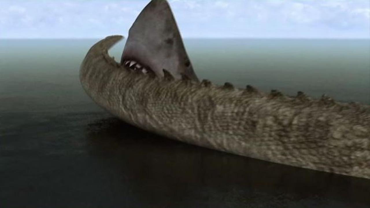 mega shark vs crocosaurus international